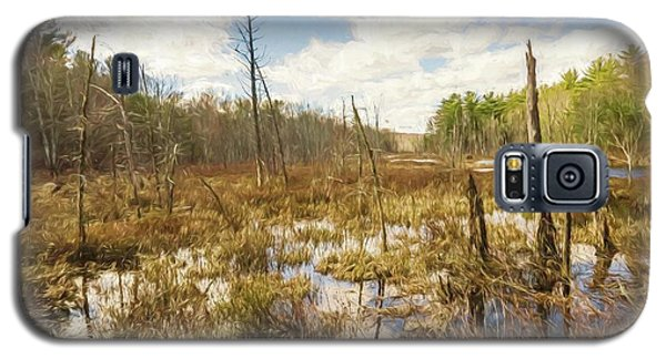 A Connecticut Marsh Galaxy S5 Case