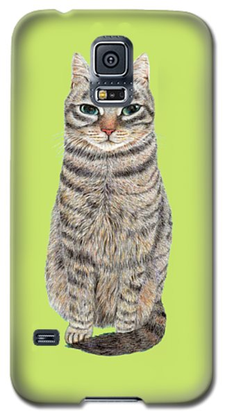 A Cool Tabby Galaxy S5 Case