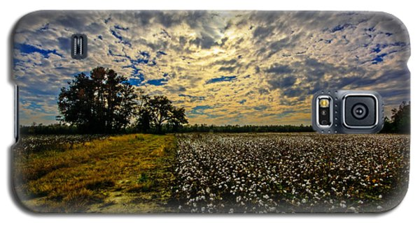 Galaxy S5 Case featuring the photograph A Cotton Field In November by John Harding