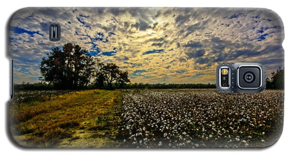 A Cotton Field In November Galaxy S5 Case by John Harding