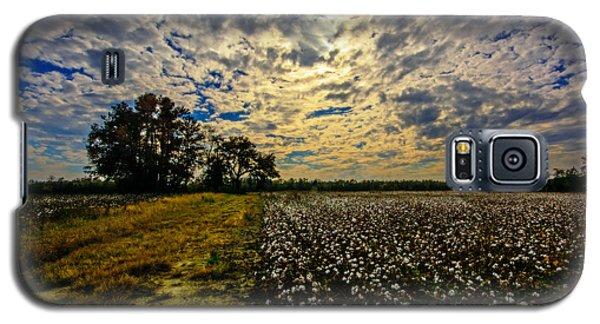 A Cotton Field In November Galaxy S5 Case