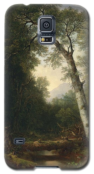 A Creek In The Woods Galaxy S5 Case