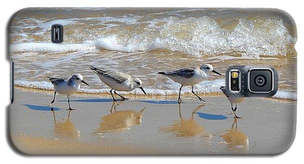 A Cute Quartet Of Sandpipers Galaxy S5 Case