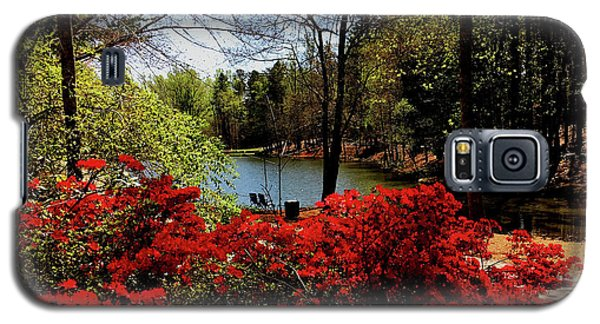 A Day In The Park Galaxy S5 Case