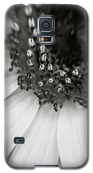 A Deeper Look Galaxy S5 Case