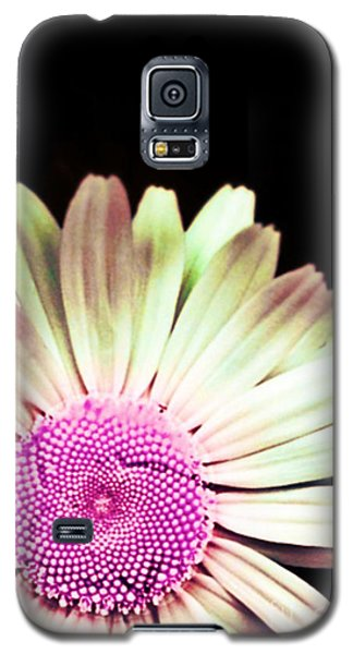 A Different Shade Of Michaelmas Galaxy S5 Case