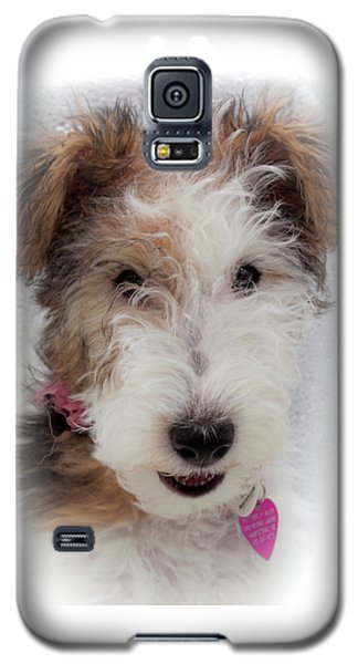 A Dog Named Butterfly Galaxy S5 Case by Karen Wiles