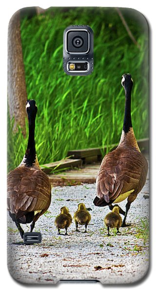 A Family Stroll Galaxy S5 Case