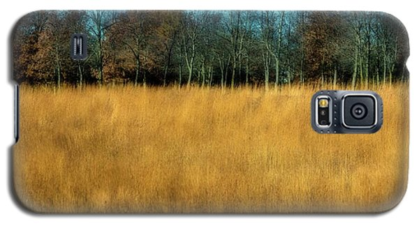 A Field Of Browns Galaxy S5 Case