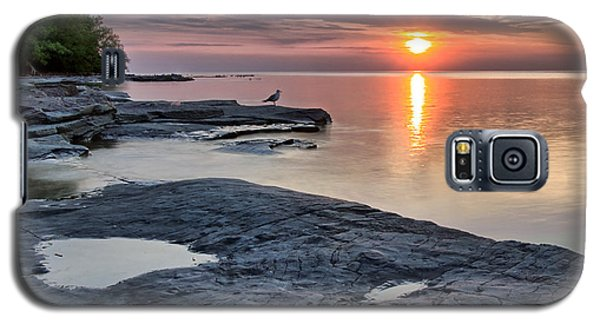 A Flat Rock Sunset With Seagull Galaxy S5 Case