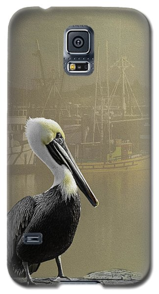 Galaxy S5 Case featuring the photograph A Foggy Pelican Sunset by Diane Schuster