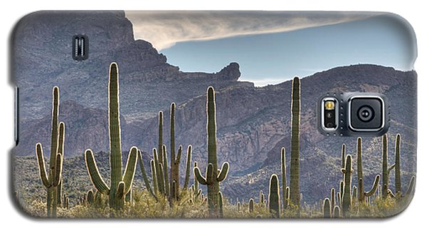 A Forest Of Saguaro Cacti Galaxy S5 Case