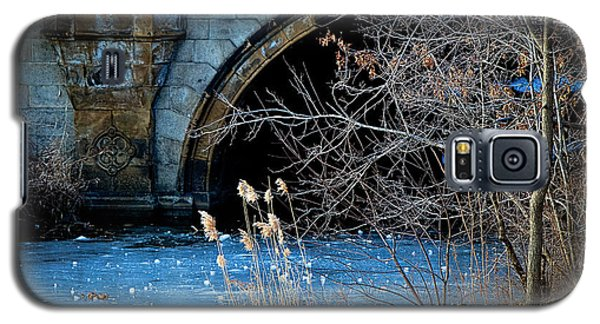A Frozen Corner In Central Park Galaxy S5 Case