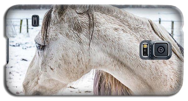 A Girlfriend Of The Horse Amigo Galaxy S5 Case