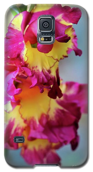 A Gladiolus 3 Galaxy S5 Case