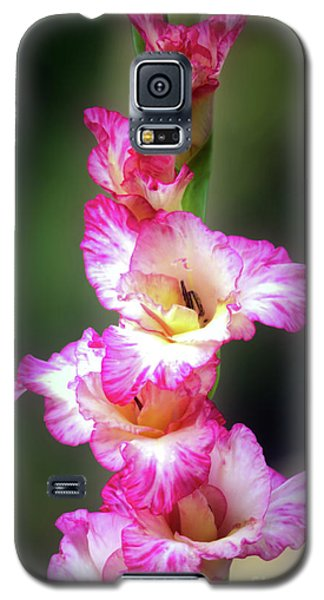 A Gladiolus Galaxy S5 Case