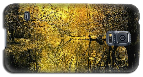 A Golden Tribute To Collins Creek Galaxy S5 Case by Jim Vance
