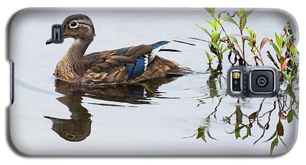 A Graceful Swim Galaxy S5 Case