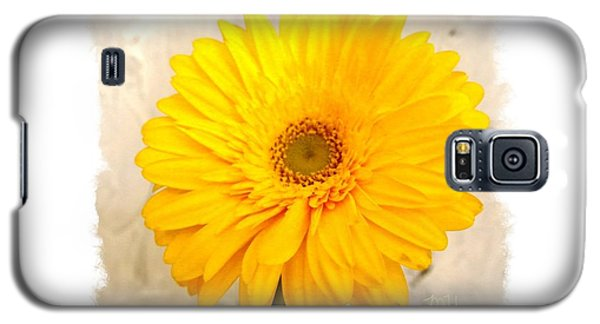 Galaxy S5 Case featuring the photograph A Grand Yellow Gerber by Marsha Heiken