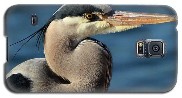 A Great Blue Heron Posing Galaxy S5 Case