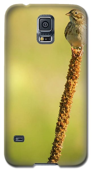 Galaxy S5 Case featuring the photograph A Great Sense Of Balance IIi by John De Bord