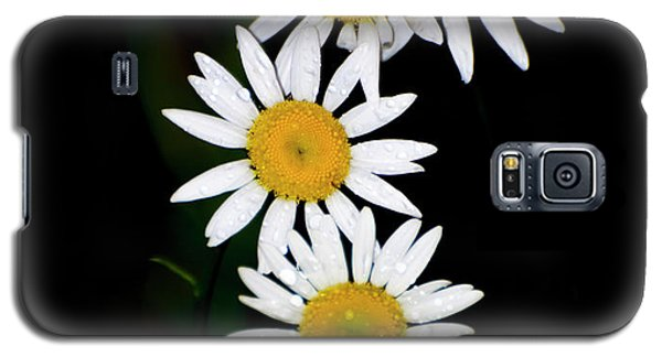 Galaxy S5 Case featuring the digital art A Group Of Wild Daisies by Chris Flees