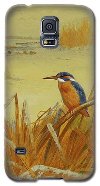 A Kingfisher Amongst Reeds In Winter Galaxy S5 Case by Archibald Thorburn