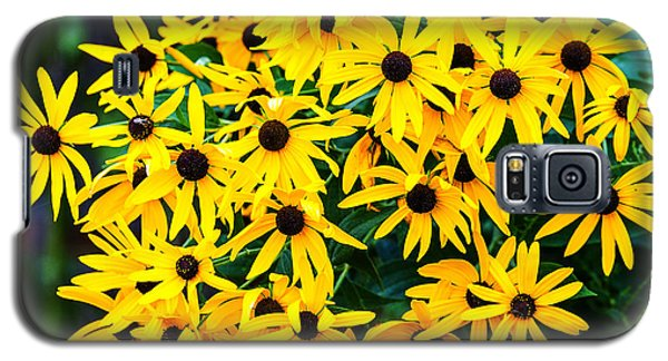 Galaxy S5 Case featuring the photograph A Like Grouping by Edward Peterson