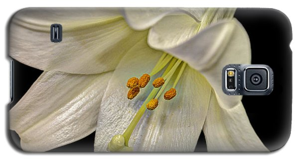 A Lily For Easter Galaxy S5 Case by Deborah Klubertanz