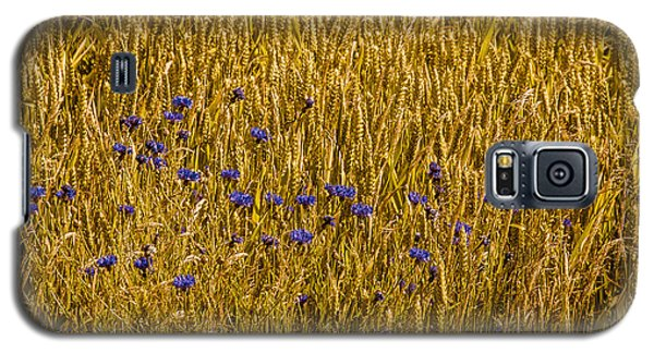 Galaxy S5 Case featuring the photograph A Little Blue by Odd Jeppesen