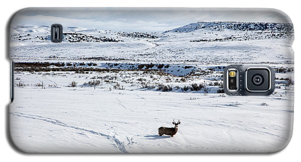 Galaxy S5 Case featuring the photograph A Lone Buck Deer In Carbon County, Wyoming by Carol M Highsmith