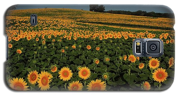 Galaxy S5 Case featuring the photograph A Lot Of Birdseed  by Chris Berry