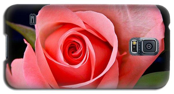 A Loving Rose Galaxy S5 Case