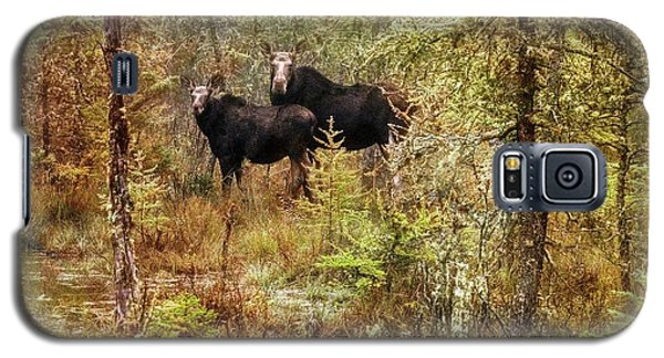 A Mother And Calf Moose. Galaxy S5 Case