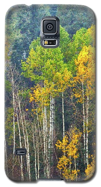 A Muted Fall Galaxy S5 Case