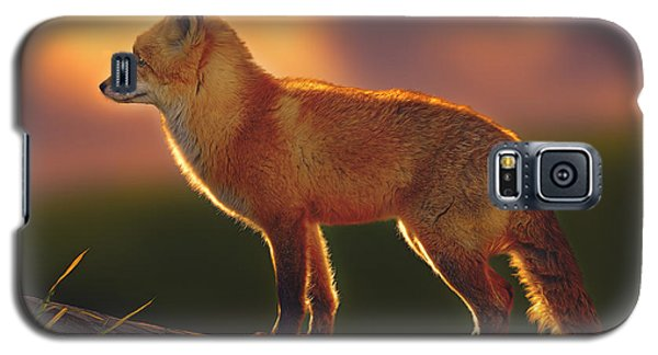 A New Day Dawning  Galaxy S5 Case
