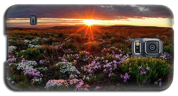 Galaxy S5 Case featuring the photograph A Nuttalls Linanthastrum Morning by Leland D Howard