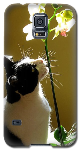 Galaxy S5 Case featuring the photograph A Orchid Lover by Alfred Ng