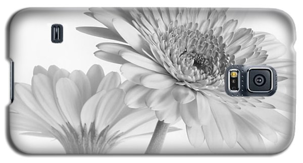 A Pair Of Daisies Galaxy S5 Case by David and Carol Kelly