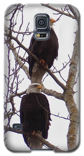 A Pair Of Eagles Galaxy S5 Case by Karen Molenaar Terrell