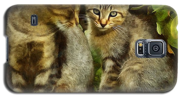 A Pair Of Feral Cats Galaxy S5 Case