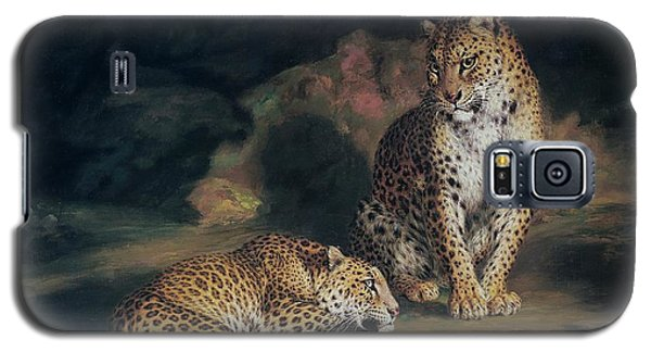 A Pair Of Leopards Galaxy S5 Case by William Huggins