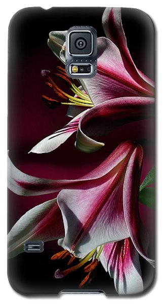 A Pair Of Lilies Galaxy S5 Case by Judy  Johnson