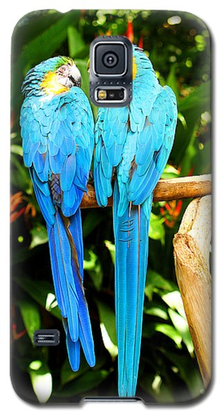 A Pair Of Parrots Galaxy S5 Case