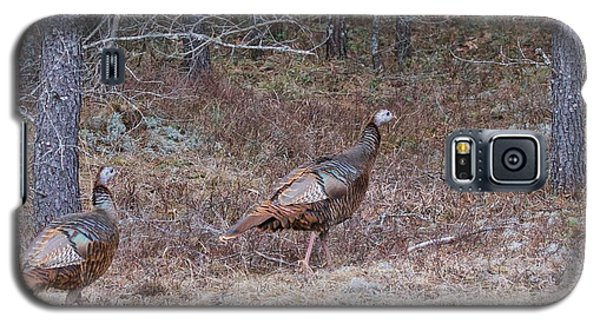Galaxy S5 Case featuring the photograph A Pair Of Turkeys 1152 by Michael Peychich