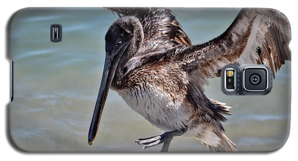 A Pelican Practising A Karate Kick Like Daniel In The Karate Kid Galaxy S5 Case