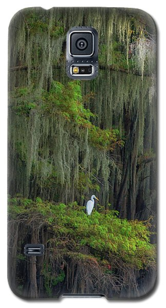 A Perch With A View Galaxy S5 Case