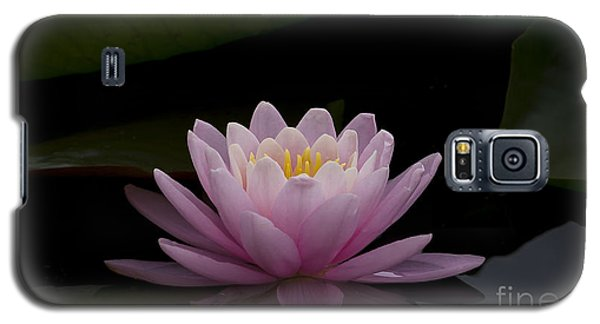 Galaxy S5 Case featuring the photograph A Perfect Bloom by Andrea Silies