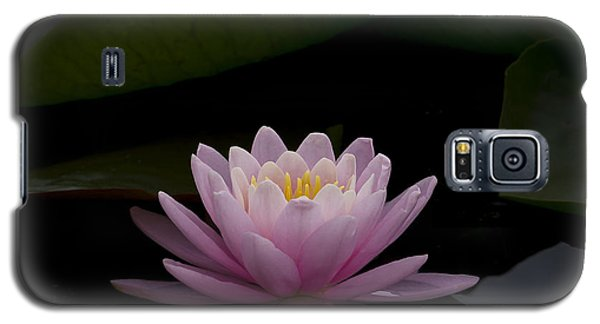 A Perfect Bloom Galaxy S5 Case