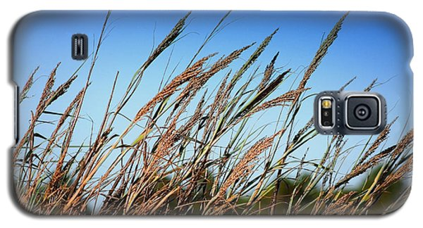 Galaxy S5 Case featuring the photograph A Picture Worth A Thousand Words by Debra Forand